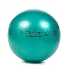 Vivamax QMED Gym ball  GYQGYM65